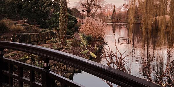 Foto de un puente en un arroyo, hecha por Julian Moreno